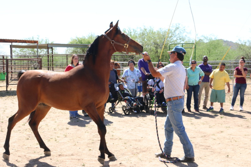 GPS students and staff watch an Arabian perform